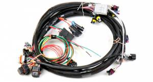 EFI - EFI/ECU Wiring & Accessories