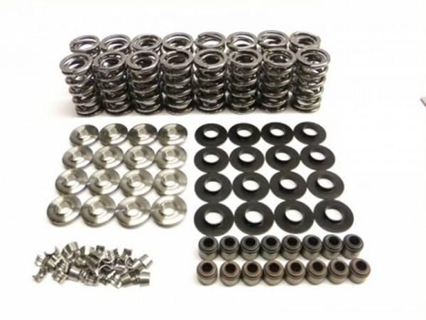 brian tooley racing - Brian Tooley Racing GM/LS .660 Lift Platinum Valve Spring Kit