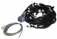 EFI - EFI/ECU Wiring & Accessories - F.A.S.T. - FAST XFI Main Wiring Harness