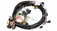 Air & Fuel Delivery - EFI - EFI/ECU Wiring & Accessories