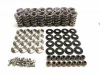 brian tooley racing -  Brian Tooley Racing GM/LS .660 Lift Platinum Valve Spring Kit