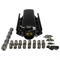 Cylinder Heads & Services - LS Top End Power Packages - RHS Stage 1 Forced Induction Intake & Cam Package Cathedral Port Heads